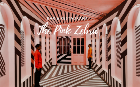 Wes Anderson Inspired this Unique Restaurant Design and We Want In!_feat