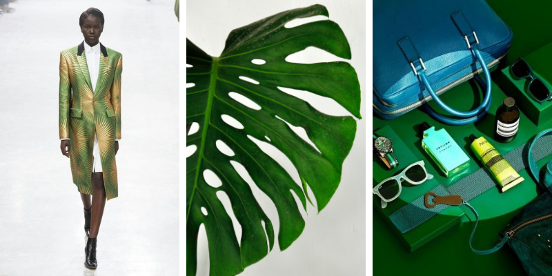 Moodboards Trends_ Green Forest Color Scheme_4