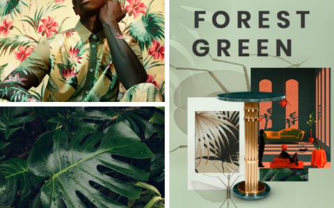 Moodboards Trends: Green Forest Color Scheme